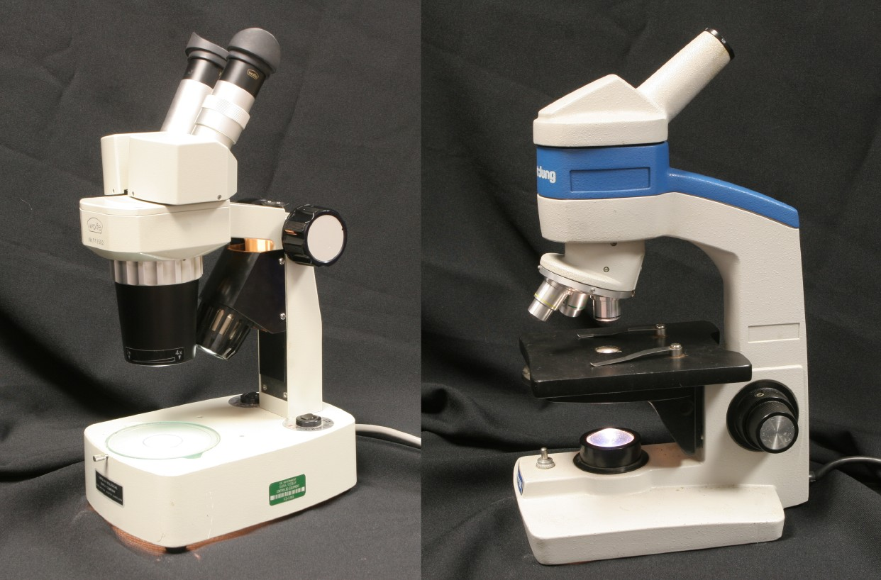 Dissecting microscope diagram pics dissecting microscope diagram ccuart Images